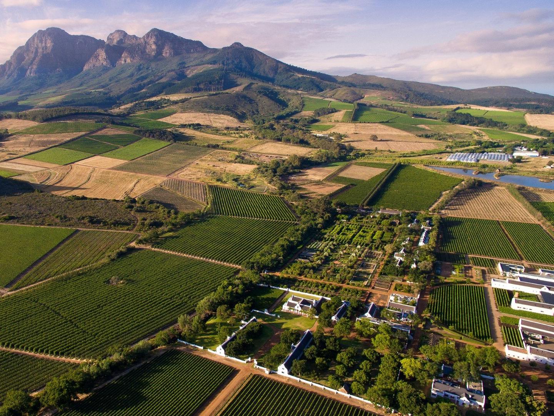 Simonsberg Mountain and Babylontored - Private Non-Guided Driver Service - Franschhoek Vineyard Hopper